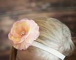 Rachelle Headband and  Clip- 2 colors